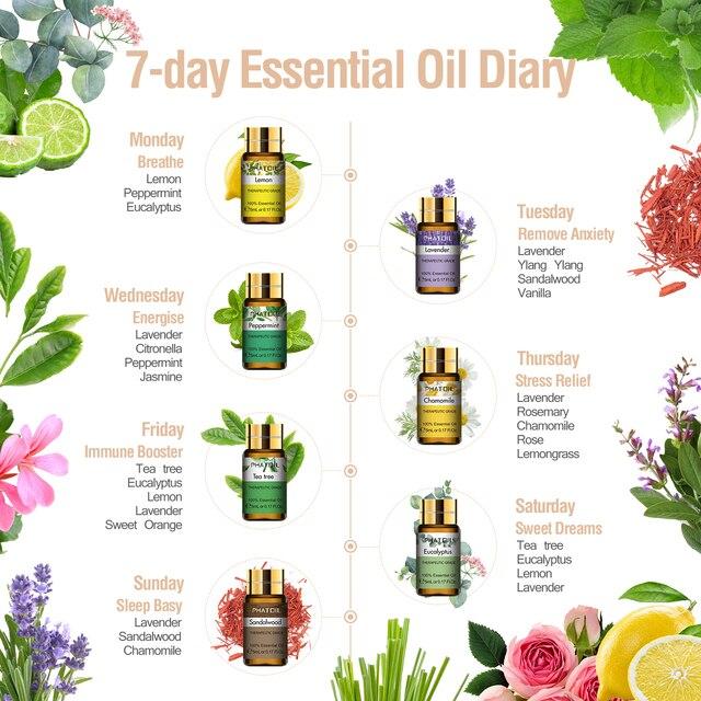 Huiles essentielles pures 15 pièces coffret cadeau arôme végétal naturel diffuseur d'huiles essentielles Eucalyptus vanille menthe géranium Rose huile d'arbre à thé 2