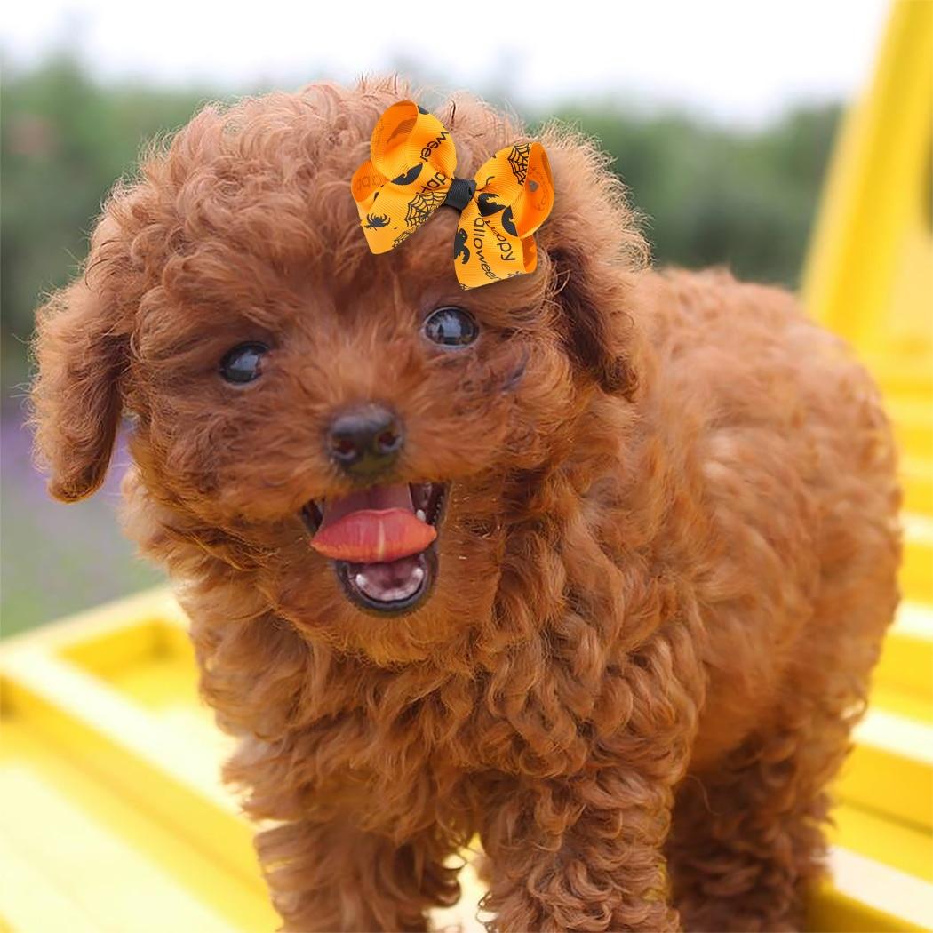 US $11.11 411% OFFCute Dog Hair Clip Halloween Pet Dog Hair Bows Pet  Accessories Dog Hair Cat Decoration Bows Pet Grooming Headdress Dog Hair  ClipDog