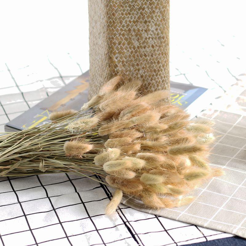 30 стеблей/лот с натуральным растительным экстрактом высушенного цветок хвост зайца букет Кролик хвост трава осень Декор вечерние аксессуа...