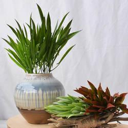 Длинная Трава Спрей цвет 5 вилка монофория Vaginalis мягкий силконус гладиолус трава Handfeel растительная стена с деревянная модель водный план
