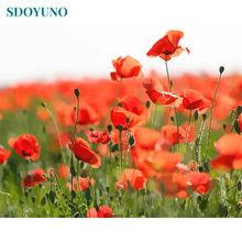 Sdoyuno 60x75 см diy картины по номерам раскраска декор для