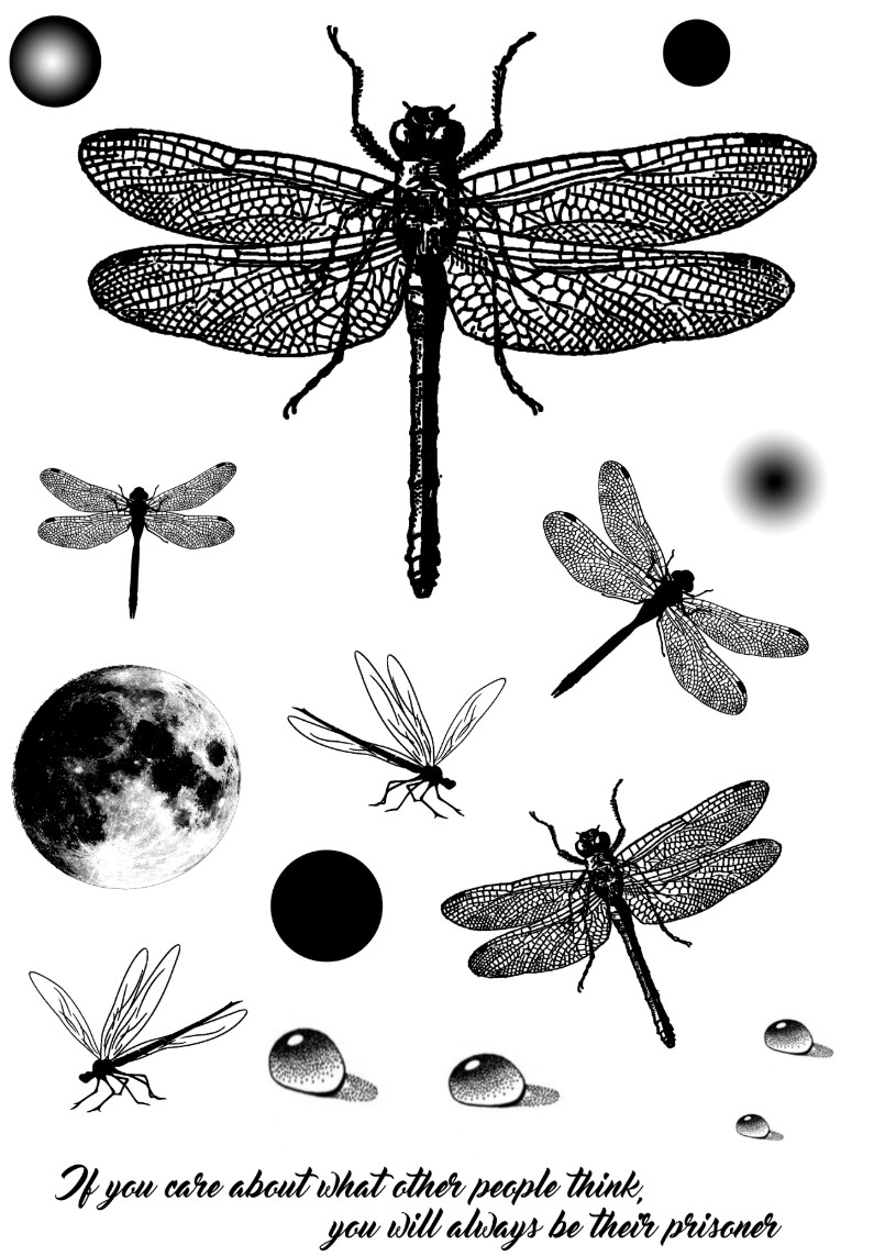 11x16 Dragonfly Species Transparent Clear Silicone Stamp/Seal For DIY Scrapbooking/photo Album Decorative Clear Stamp Sheets