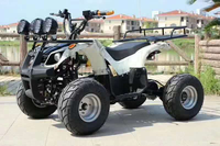 Motorcycle  ATV  Electric Beach Buggy  All Terrain Vehicle 1
