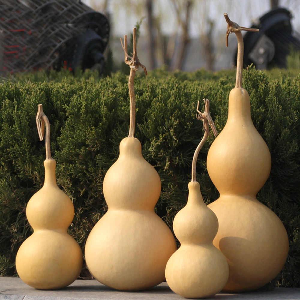 כל גודל טבעי דלעת מיובשת & cucurbit עבור בית קישוטים