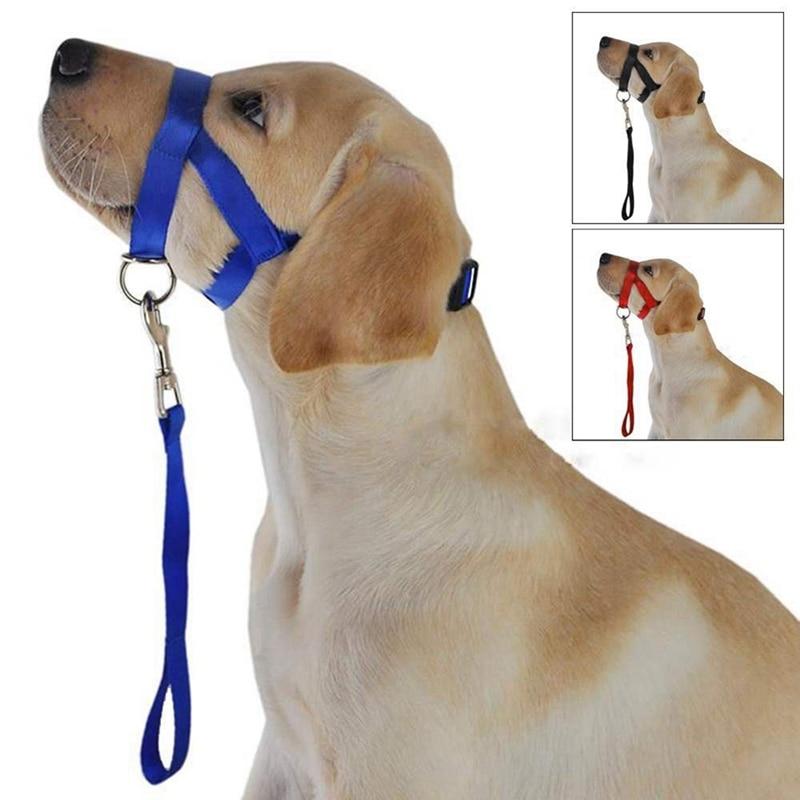 HOT SALE Nylon Dogs Head Collar Dog Training Halter Harness Colors S-XL Supplies cheap