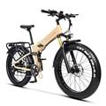 W Wallke X3 Pro Electric Bike Foldable Ebike 750W 26 inch Electric Mountain Bike, 26MPH Adults Bike Electric, Removable 48V Lith