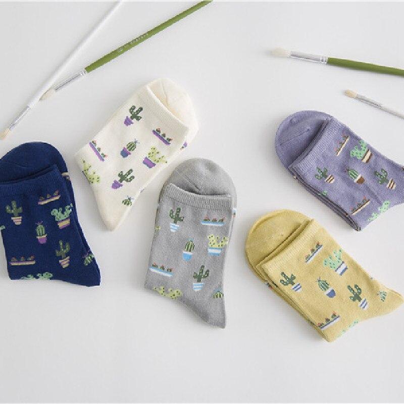 Korean Version Of Plain Small Fresh Cactus Cotton Women's Tube Socks Cotton Socks Wholesale