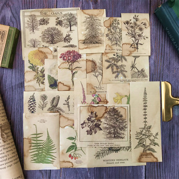 17PCS Retro Flower Plant Illustration Material TN Coffee Dyed Paper Junk Journal DIY Scrapbooking Decoration Stationery Stickers