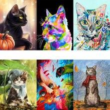Tapb Цвет наборы кошка масло Краски ing по номерам рисунок акриловые