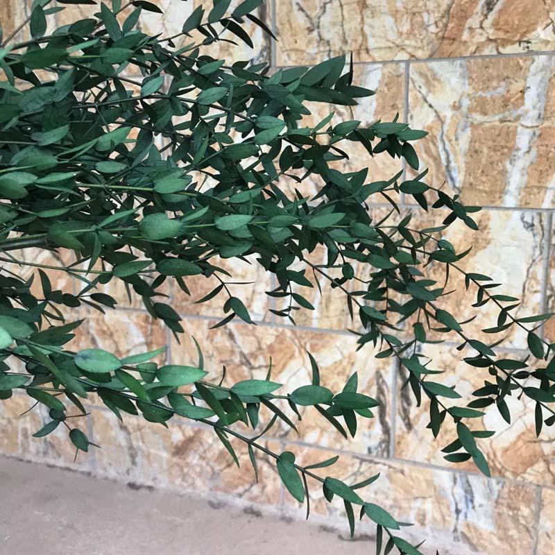 Ветка эвкалипта с натуральными листьями, 30-45 см, 40 г, для украшения дома, свадьбы