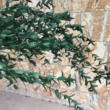 30~45CM,40g Nature Preserved Fine Leaf Eucalyptus Branch,DIY Eternell leaves Flower Eucalyptus Garland For Home Decor,Wedding
