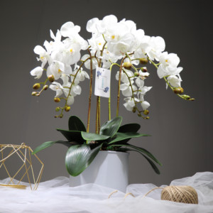 Image 4 - INDIGO  Phalaenopsis Butterfly White Orchid Real Touch Artificial Flower Office Wedding Moth Orchid Floral Party  Interior Trim