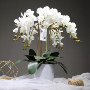 Image 4 - INDIGO  Phalaenopsis papillon blanc orchidée vraie touche artificielle fleur bureau mariage papillon orchidée fête florale garniture intérieure