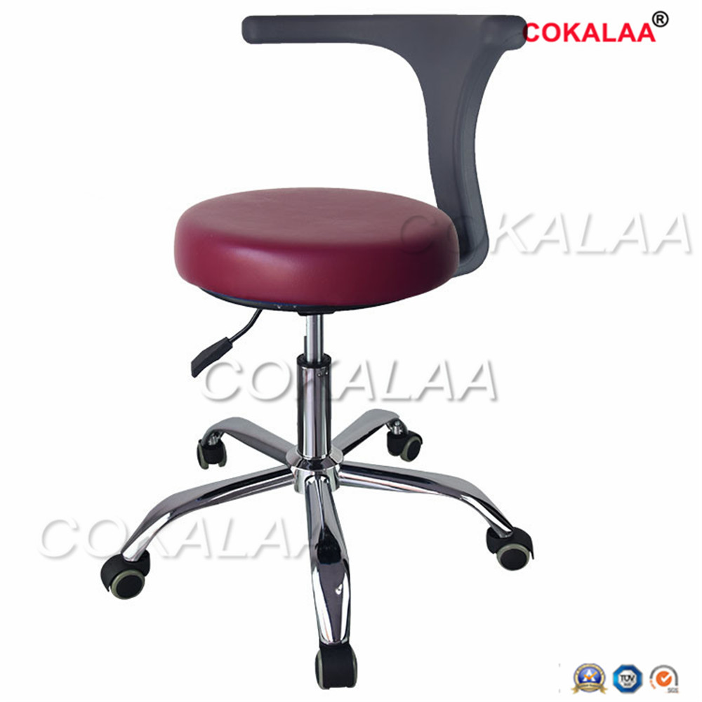 Dental Medical Dentist's Chair Seat Adjustable Rolling Chair With Back Anti-Static Beauty Stool Salon Barber