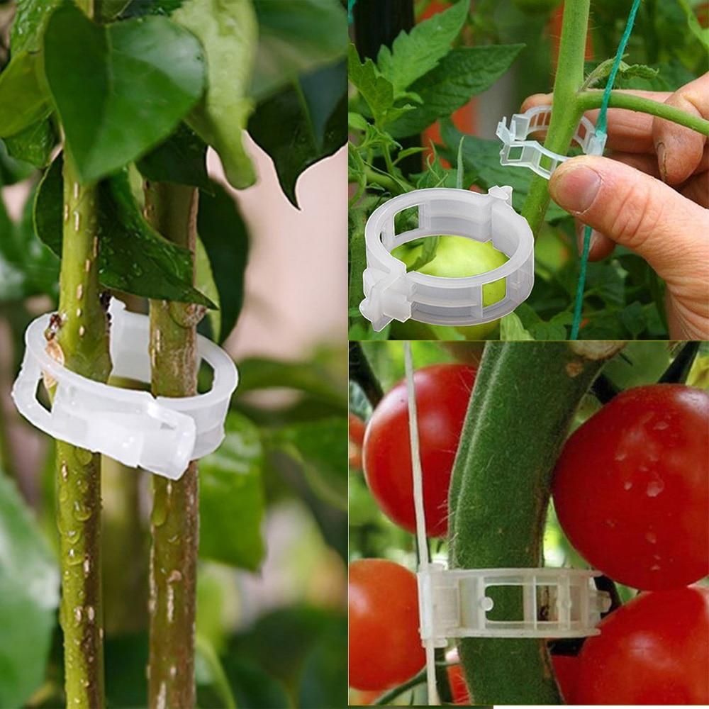 50/100/200 шт. 23 мм Пластик завод Поддержка зажимы для искусственные растения висит лоза Парниковый Сад овощи помидоры зажимы