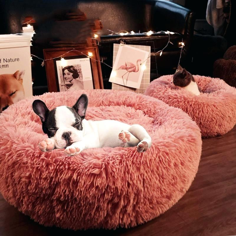 Soft Warm Round Pet Dog Bed Comfy Hondenbed Calming Pet Bed Dog Cushion Mat Dog Cat Washable Plush Kennel Hondenmand Donut Bed|Houses, Kennels & Pens|   - AliExpress