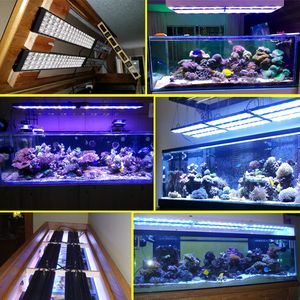 "Image 5 - PopBloom Led Light Aquarium Reef Aquarium Light Reef Light Aquarium for 36""/90 cm Reef Coral Marine Fish Tank Turing75"