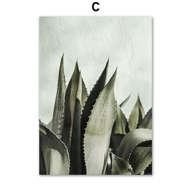 5x7 or 4x6 Portrait Photo Frame Framed Wall Art Cactus Succulent Agave Tequilana  Wall Art