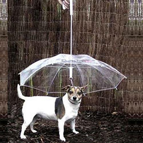 Dog Walking Waterproof Clear Cover Built-in Leash Rain Sleet Snow Pet Umbrella