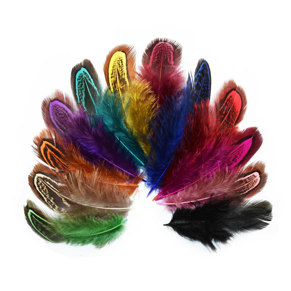 24 pcs 4-6cm Rare Precious DIY Wedding Party Decorative Multi-colour Pheasant Plume Feather Natural Feathers for Home Decor IF12