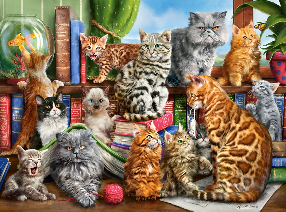 New Assemble Cats On The Castor's Shelf 2000 Pcs  Jigsaw Puzzle.for Adult Birthday's Gift