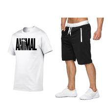 Cotton men's short-sleeved t-shirt two-piece shorts suit summer paragraph male Shi Ou edition foreign trade sports and leisure