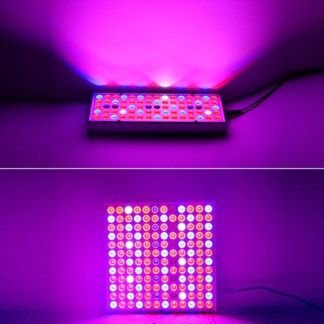 2pcs LED Grow Lights Full Spectrum Phyto Lamp For Plants 6