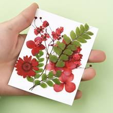 12 pz/borsa fiori secchi fai da te resina epossidica colla riempimento decorazione fiore bouganville arte naturale goffratura creazione di gioielli