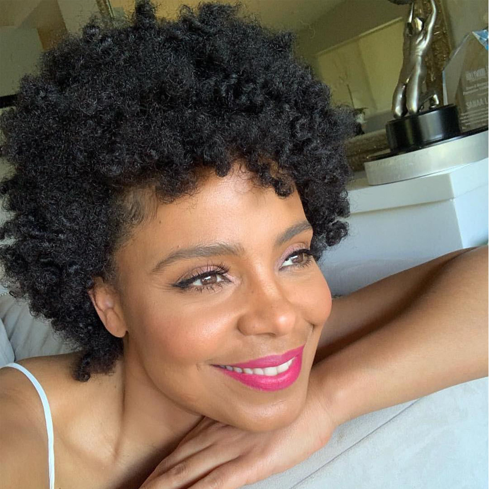 Joedir Short Human Hair Wigs For Black Women Brazilian Afro Kinky Curly Wig Ombre Mix Brown Color Short Curly Afro Full Wig