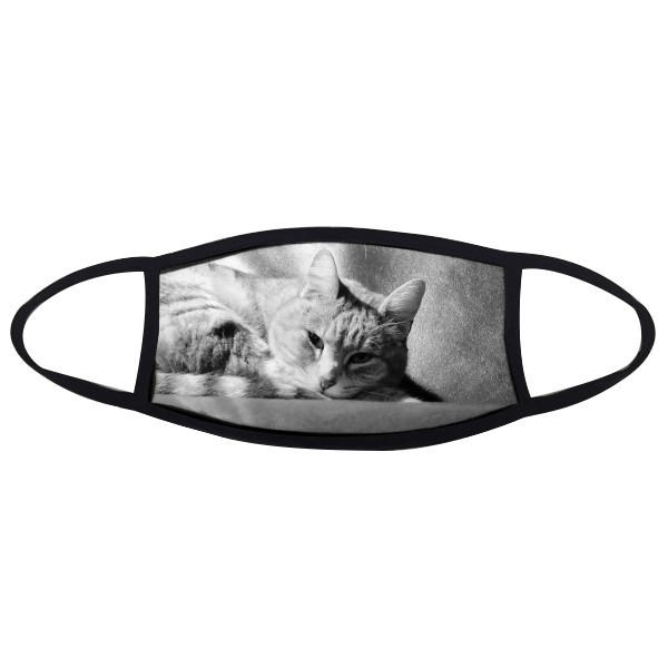 Animal Pure Gray Cat Photograph Picture Mouth Face Anti-dust Mask Anti Cold Warm Washable Cotton Gift
