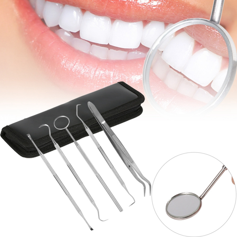 5 Pieces Set Stainless Steel Dentist Dental Care Cleaning Teeth Whitening Dental Floss Dental Hygiene Kit Plaque Remover Set Den