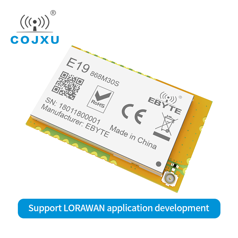 LoRaWAN 868MHz SX1276 LORA 1w Rf Module Iot SPI Long Range E19-868M30S Wireless Rf Transmitter Receiver Stamp Hole IPEX Antenna