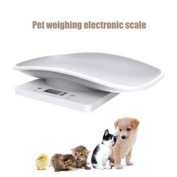 Цифровые весы ЖК-дисплей Pet электронные весы инструмент мини точность грамм Вес весы Подсветка измерительный Кухня расходные материалы