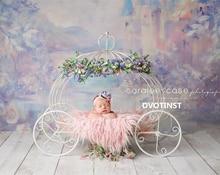 Dvotinst Newborn Photography Props Baby Iron Princess Cinderella Carriage Prop Posing Pumpkin Car Poser Fotografia Photo Props