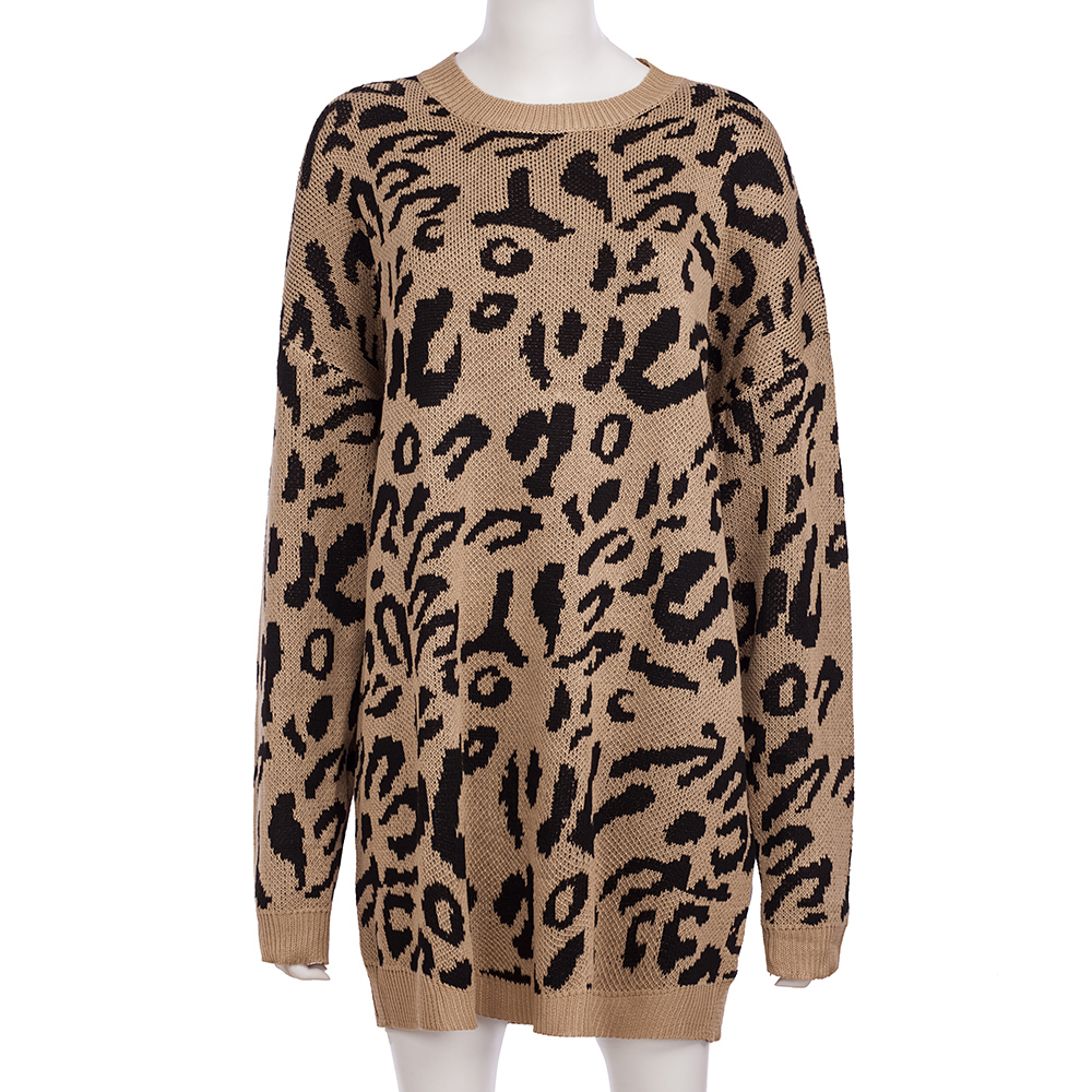 Dilusoo Leopard Print Winter Knitted Sweater Women O-neck Long Sleeve Loose Sweaters Female 19 Casual Autumn Overalls Sweaters 14