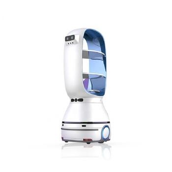 Niski koszt 9660-13800 USD T1 humanoidalny Robot do dostawy żywności dla hotelu i restauracji tanie i dobre opinie NoEnName_Null CN (pochodzenie) Wyświetlanie informacji ODTWARZANIE WIDEO