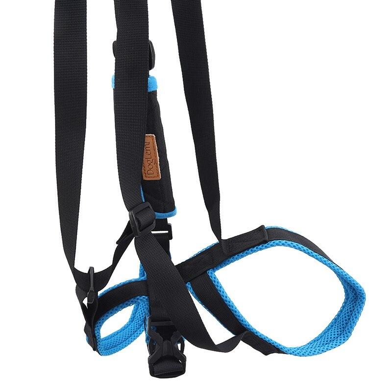 Cão de estimação auxiliar ferramenta ajustável pernas