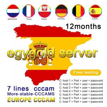 egygold cccam cline for 1 year Warranty Europe 7 lines egygold server Turkey Portugal Spain Germany Italy Poland full HD DVB-S2 new for 5207 32p0765 32p0766 146g 10k fc ds4300 1 year warranty