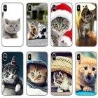 Funny Kitten Cat cov...