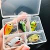 Best TREHOOK Crankbait Fishing Lure 5pcs 1.5g Fishing Lures cb5feb1b7314637725a2e7: Combo A|Combo B|Combo C|Combo D