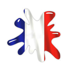 Наклейка для мотоцикла 13 х13 см с французским флагом