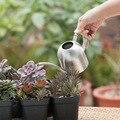 Комнатный маленький поливочный горшок из нержавеющей стали садовый носик растительный инструмент DC156