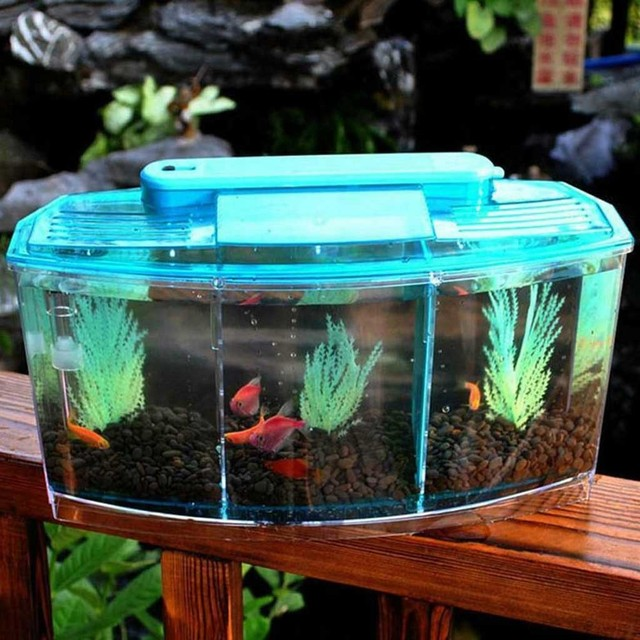 Mini LED Aquarium  2