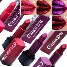 Professional Lips Makeup Waterproof Long Lasting Pigment Shi