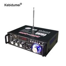 Profesyonel 600W ev amplifikatörler 220V ses Bluetooth amplifikatör Subwoofer amplifikatör ev sineması ses sistemi Mini amplifikatör