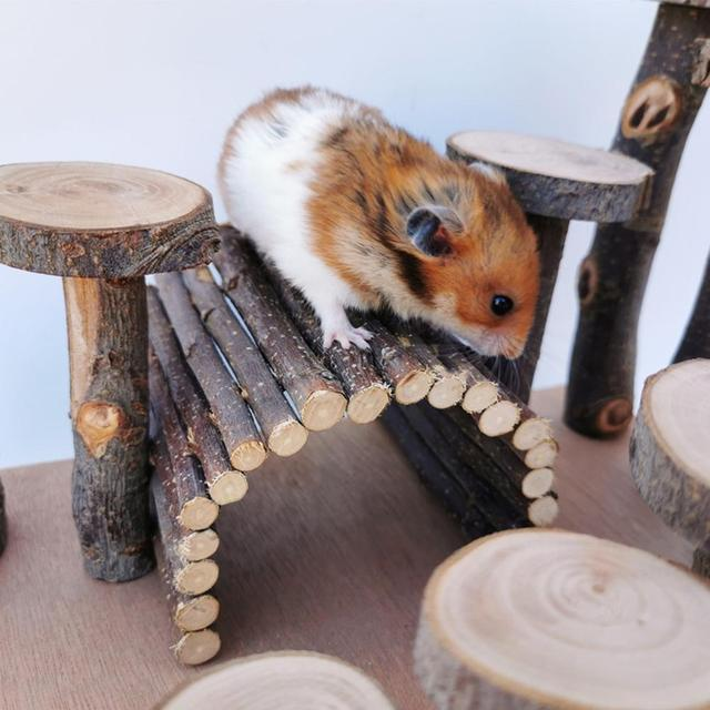 Apple wood Hamster Toy Ladder Small Pet Stairs Step Fitness Exercise Toy Hammock Playground Pet Feeder for Small Pet 3