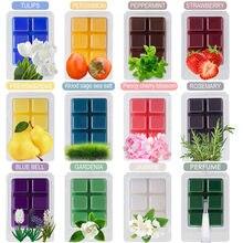 Cera scented derrete cera de aromaterapia cera de soja scented derrete-conjunto de 6 cubos/tortas de aquecedor de cera sortidas-morango, perfume