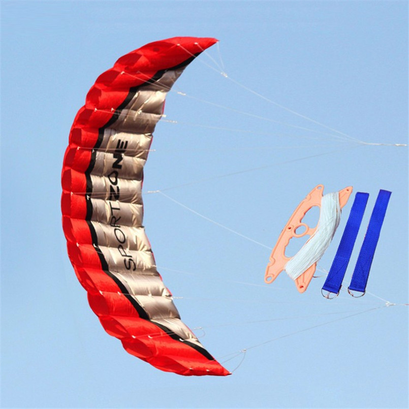 2.5m High Quality Nylon Soft Double Line Parachute Kite Paragliding Beach Surfing Stunt Kite Outdoor Sports Toy Holiday Gift