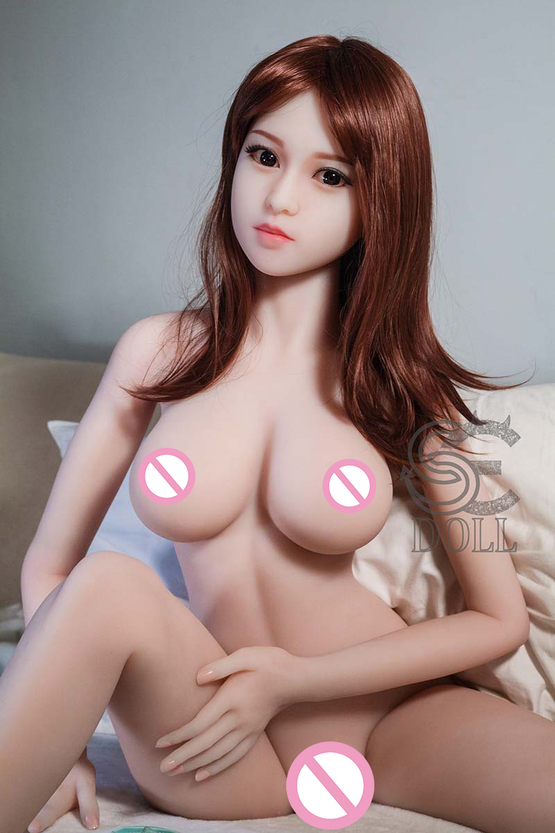 SED041-20