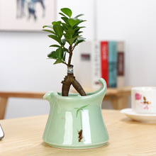 Plant Pot Personality Green Creative  Home Decoration Ceramic Fleshy Flower Pots Planters for Flowers